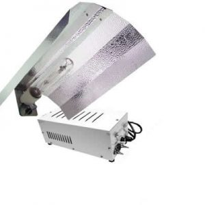 600w ProGear Lighting System